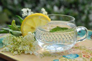 Holunderblütensirup mit einer Scheibe Zitrone in einer Glastasse.