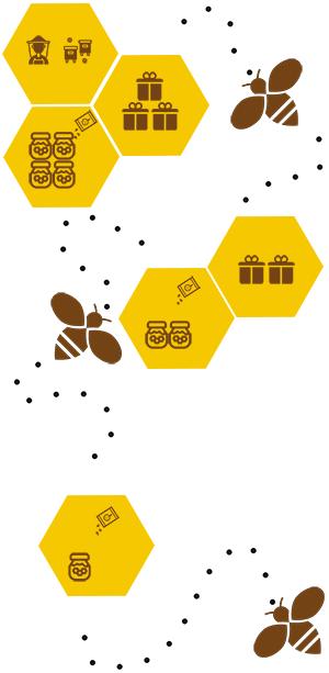 Die drei Stufen der Bienenpatenschaft