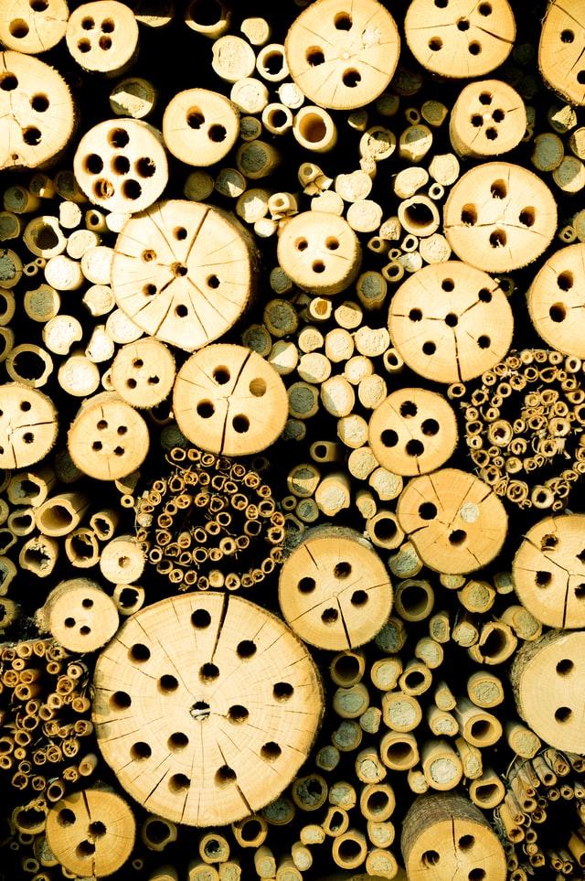 Ein typisches Wildbienenhotel mit den typischen Fehlern: Nie ins Stirnholz bohren sonst bilden sich Risse! Weder Menschen noch Wildbienen mögen es wenn der Wind durch Risse in den Wänden pfeift.
