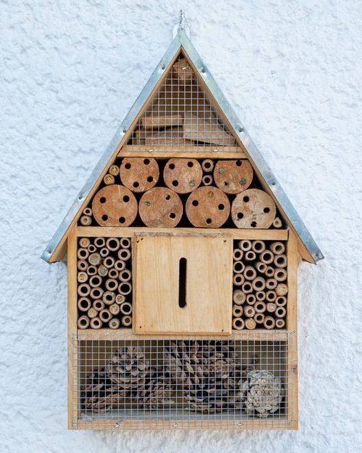 Ein Insektenhotel bei dem fast alles falsch gemacht wurde. Wollen keine Wildbienen einziehen.