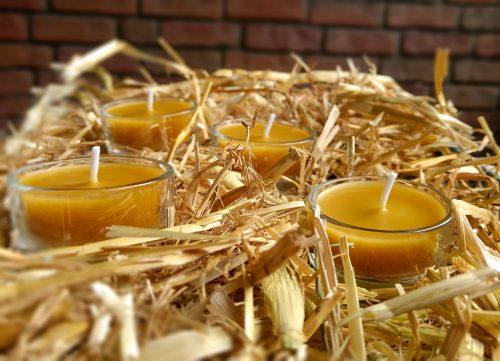 Unsere Teelichter aus 100% Bienenwachs
