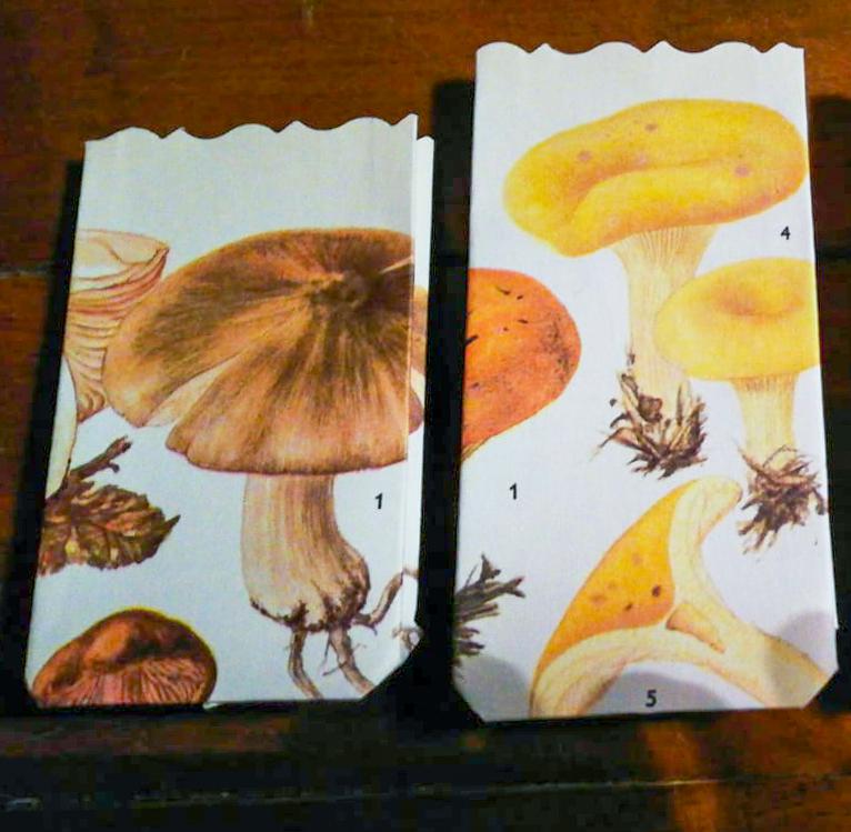 Selbstgemachte Geschenktüten aus Buchseiten mit Pilzmotiv