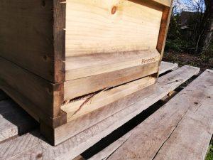 Bienenbeute mit Schäden durch Spechte